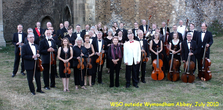 WSO group July 2010